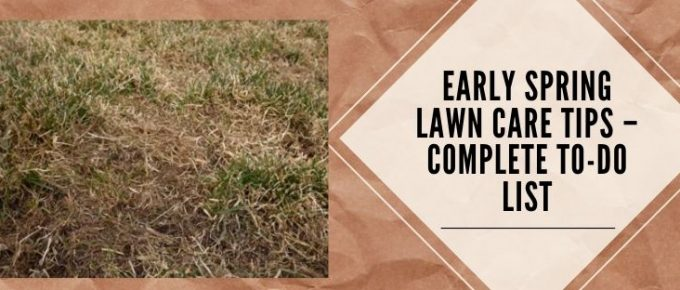 lawn care in spring season